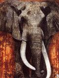 Elephant Print by Fabienne Arietti
