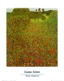 Campo de papoulas Arte por Gustav Klimt