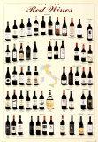 Vins rouges italiens Posters