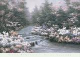 River Cascade Posters por Diane Romanello