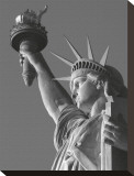 Liberty with Torch Stretched Canvas Print by Christopher Bliss