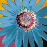Sunshine Flower II Posters por Leslie Bernsen