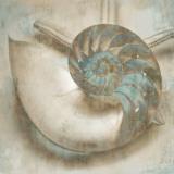 Coastal Gems IV Plakater af John Seba