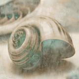 Coastal Gems II Posters por John Seba
