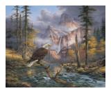Eagles Perch Konst av Rudi Reichardt