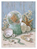 Sea Shell Collection IV Kunstdrucke von Janet Kruskamp