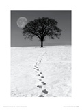 Winter Moon Giclée-tryk af Ilona Wellman