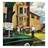 """""""Picking a Puppy"""", September 30, 1950 Giclee Print by Stevan Dohanos"""