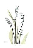 Lily of The Valley in Bloom Poster von Albert Koetsier