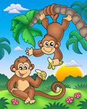 Affen Kunst von Klara Viskova