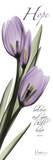 Tulips in Purple, Hope Stampe di Albert Koetsier