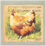Braunes Huhn Kunstdrucke von Pascal Cessou