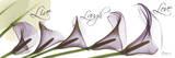 Calla Lilies Across in Purple, Live Posters por Albert Koetsier