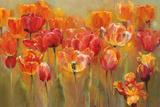 Tulips in the Midst III Prints by Marilyn Hageman
