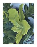 Green Oak Leaves, c.1923 Kunstdrucke von Georgia O'Keeffe
