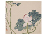 A Page (Flowers) from Flowers and Bird, Vegetables and Fruits Giclée-tryk af Li Shan