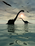 Diplodocus Dinosaurs Bathe in a Large Body of Water Fotografisk tryk af Stocktrek Images,