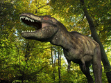A Tyrannosaurus Wanders a Cretaceous Forest Photographic Print by  Stocktrek Images