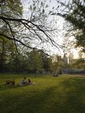 Late Afternoon in Piedmont Park in Midtown, Atlanta Fotografisk trykk av Krista Rossow