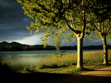 An Approaching Storm and Sunlight on Trees Alongside Lake Banyoles Photographic Print by Tino Soriano