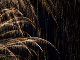 An Abstract View of Fireworks Fotoprint av Pete Ryan