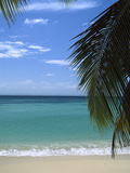 Palm Fronds Frame Bacardi Beach and Lagoon, Dominican Republic, Caribbean Reproduction photographique par Konrad Wothe