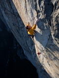 Climbers, Without Ropes, Grip an Expanse of El Capitan Fotografisk tryk af Jimmy Chin