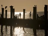 A Backlit View of People on a Pier Fotografisk tryk af Karen Kasmauski