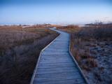 A Wooden Walkway across Marshland Toward the Ocean Fotografisk tryk af Karen Kasmauski