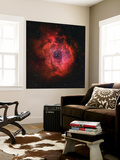 The Rosette Nebula Wall Mural by  Stocktrek Images