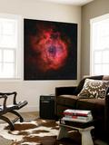 The Rosette Nebula Wall Mural by  Stocktrek Images