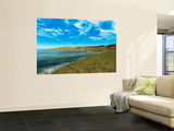 Thousands of Individual Aglaophyton Populate an  Early Devonian Bay Wall Mural by  Stocktrek Images