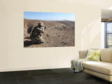 U.S. Army Soldier Provides Security for Infantry Patrolling Through Dandarh Village, Afghanistan Wall Mural by  Stocktrek Images