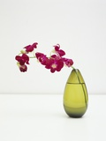 Orchid Flower in a Vase Photographic Print by Estelle Klawitter