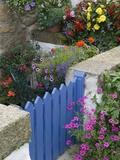 Blue Garden Gate in Spring Garden Reproduction photographique par Mark Bolton