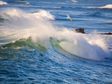Heavy Surf off Cape Kiwanda on Oregon Coast Fotografisk trykk av Craig Tuttle