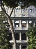 The Colosseum 写真プリント : マックス・パワー