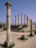 Volubilis Roman Ruins in Morocco Fotoprint van Tibor Bognár