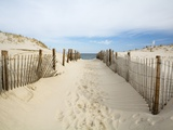 Verlaten pad naar strand Fotoprint van Stephen Mallon