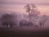 Fall Fog on Suffolk Virginia Farm Fotografisk tryk af Karen Kasmauski