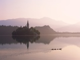 Bled Island and Lake Bled Photographic Print