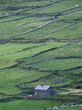 Cottage and Farm at Garraun Point Stampa fotografica