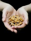 Handful of Walnuts Fotografisk tryk af Elisa Lazo De Valdez