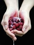 Handful of Raspberries Fotografisk tryk af Elisa Lazo De Valdez