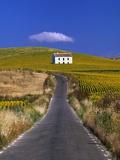 Farmhouse by Country Road Fotografie-Druck von José Fuste Raga