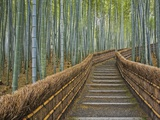 Bamboo Lined Path at Adashino Nembutsu-ji Temple Toile tendue sur châssis par Rudy Sulgan
