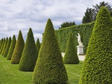 Gardens of Versailles Fotografisk trykk av Rudy Sulgan