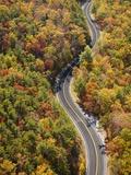 Road through Autumn forest Reproduction photographique par Cameron Davidson