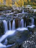 Lake O'Hara, Opabin Plateau, Cascade Lakes, Yoho National Park, British Columbia, Canada. Reproduction photographique par Ron Watts