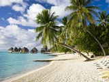 Huts at Matira Beach, Bora Bora Island Photographic Print by José Fuste Raga